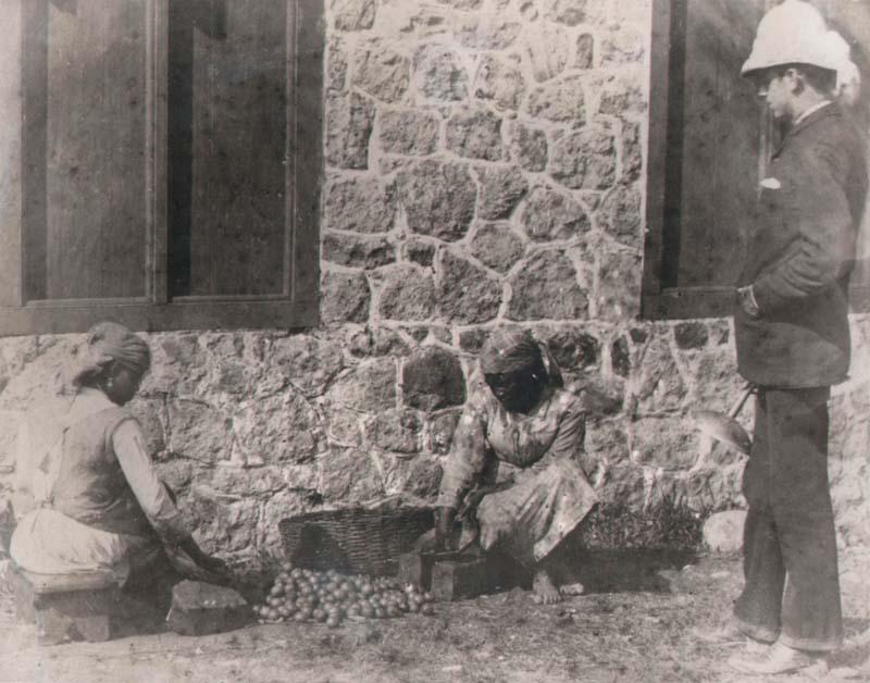 8 - Montserrat - ecuelling limes