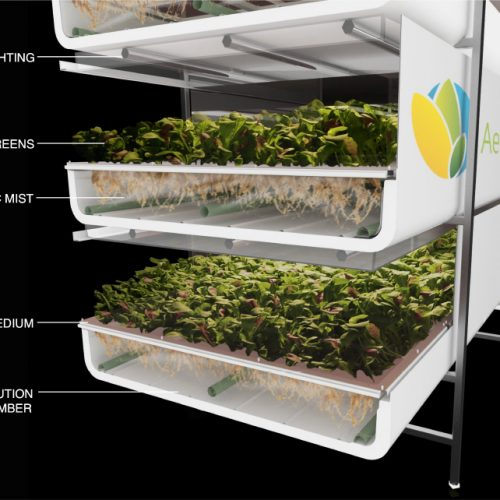 Vertical Farms…as Predicted.