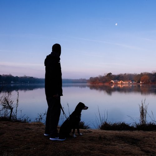 Is Your Family Pet Moonstruck?