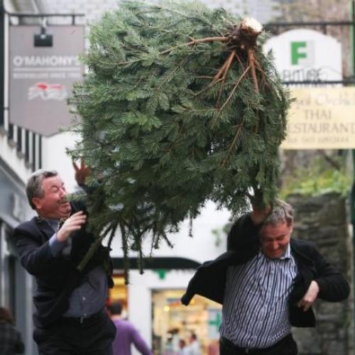 Christmas Tree Throwing Championship