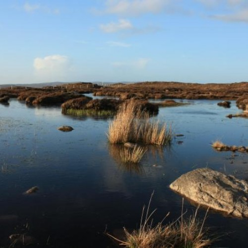 The Mysterious Dry Lakes of Ireland