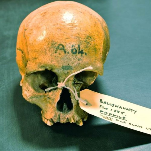 First Ancient Irish Human Genomes Have Been Cracked