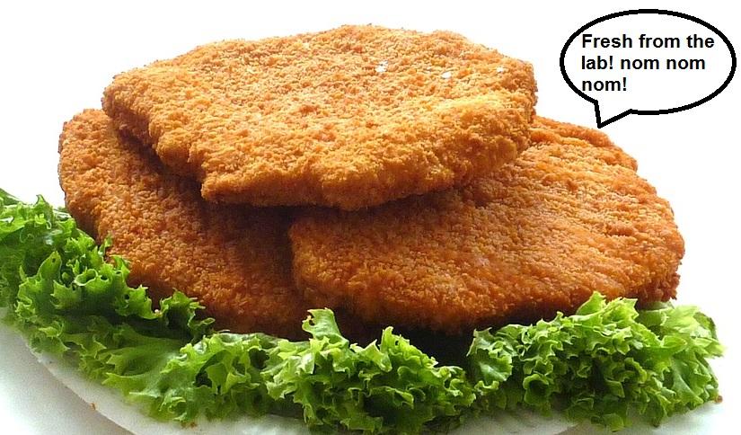 chicken-cutlet-1351331_960_720