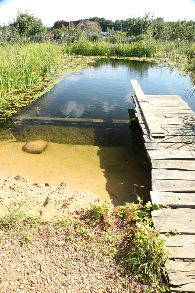 Build your own organic swimming pondbuild your own organic for Pond swimming pool