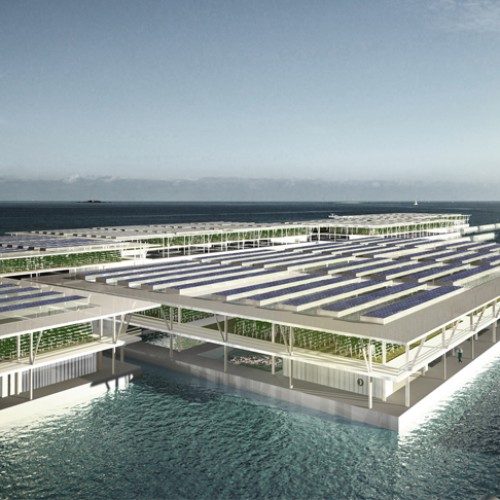 Are Floating Farms the Answer to a Lack of Farmland?