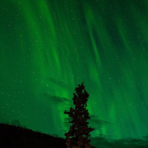 The  Auroras will be Back this Winter!