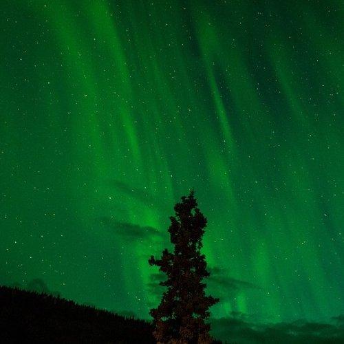 An Amazing Aurora Story