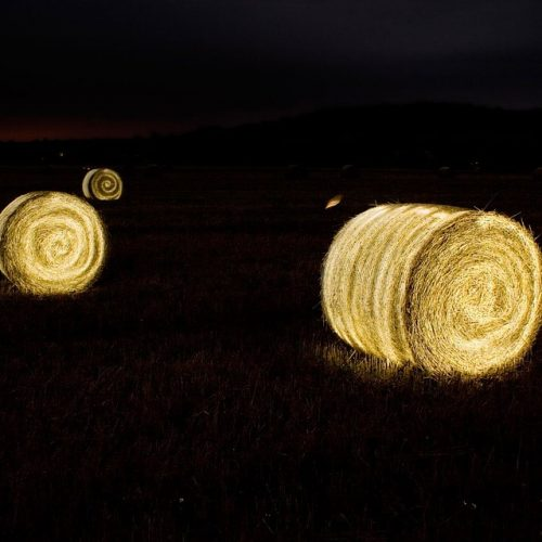 The Harvest Moon is Approaching. How Will You Celebrate?