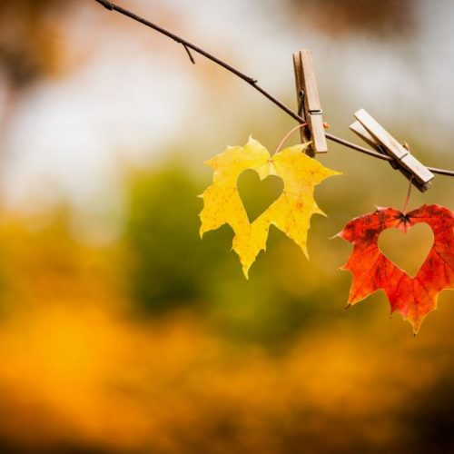 Autumn is the Peak Time for Affairs to Start