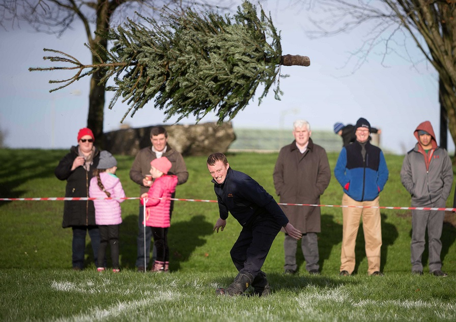 Stephen Hayes of Ennis competing in the Irish Christmas Tree Throwing Championships last year. Credit: Eamon Ward