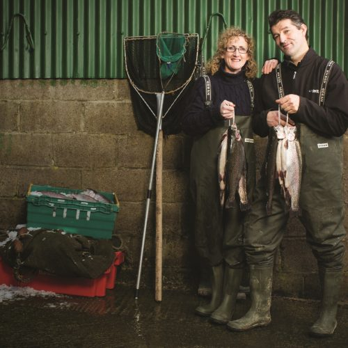 A Day in the Life… of an Irish Fishwife