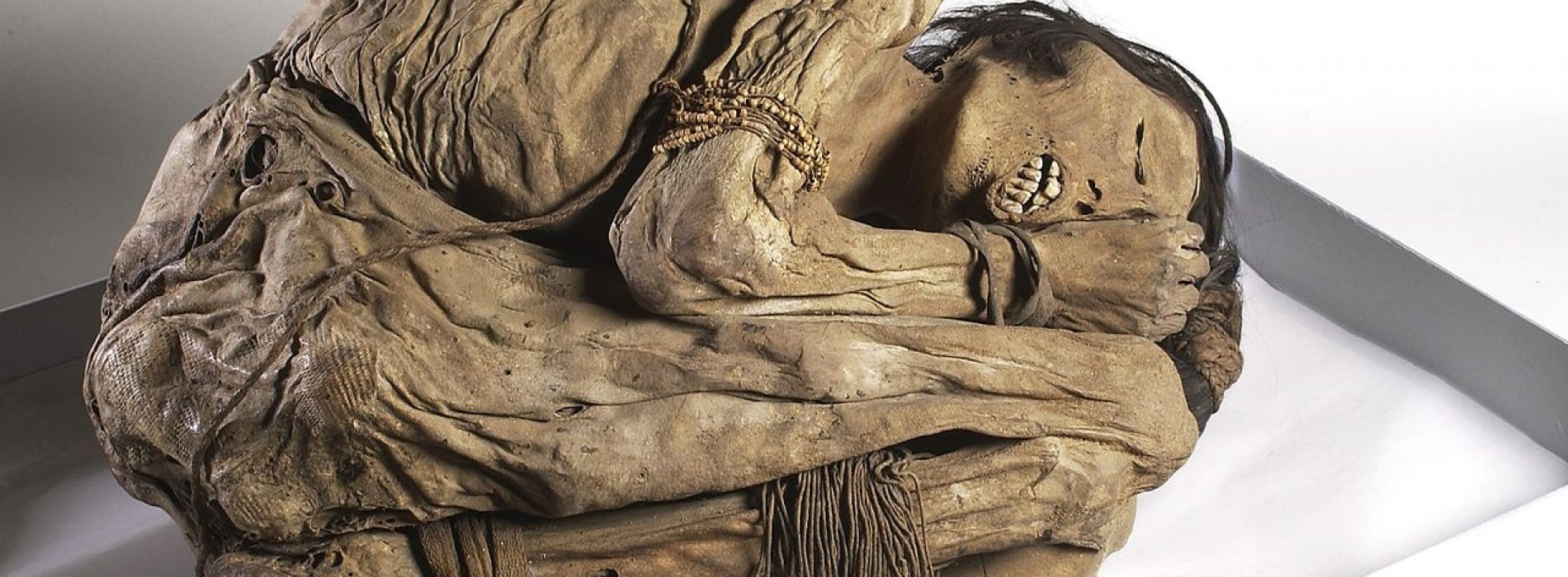 New Study Shows the Ancient Irish Dismembered Their Dead Relatives After Death