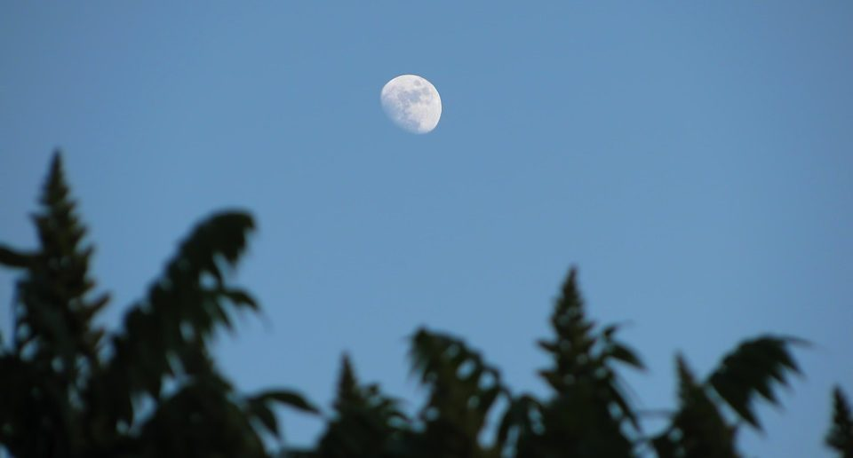 moon in sky