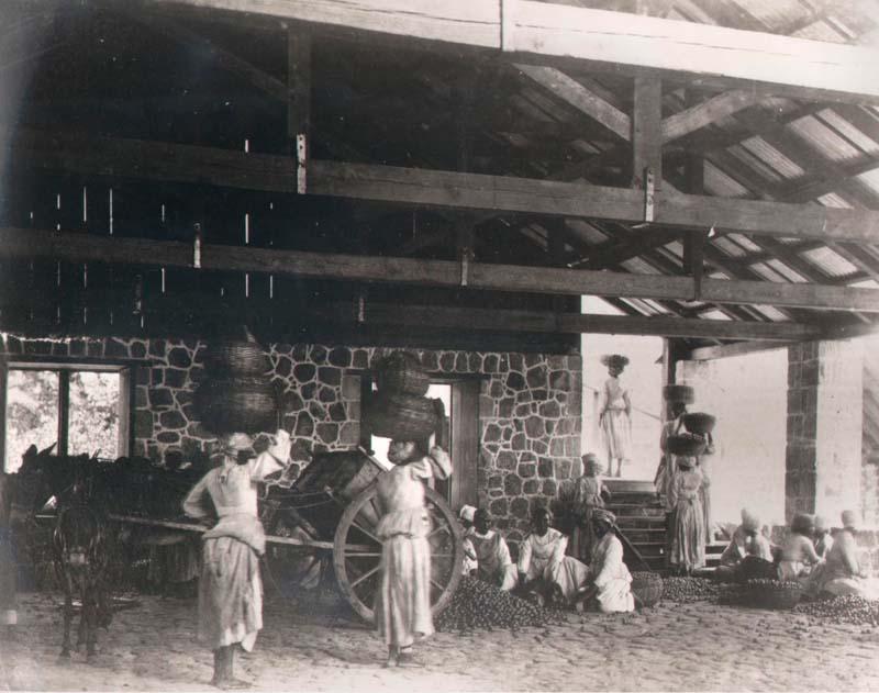 Montserrat - Foxes Bay Works - Ecuelling limes