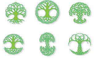 Celtic tree astrology symbols