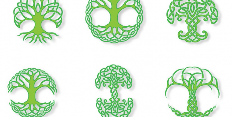 What Celtic Tree Astrology Sign Are You?