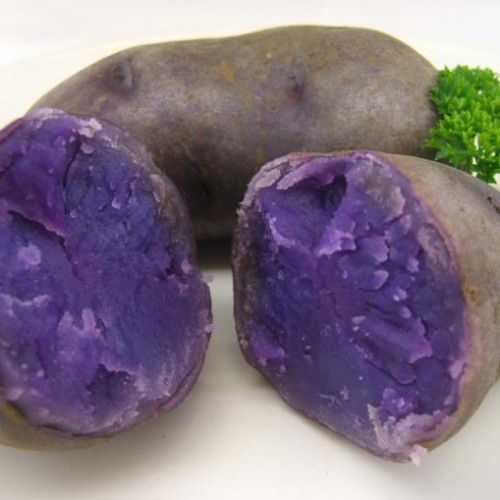 Blue Potatoes? They are Delicious and now Available in Ireland!