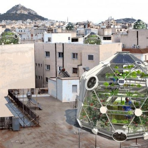 An Urban Farm on Every Rooftop Could be our Future