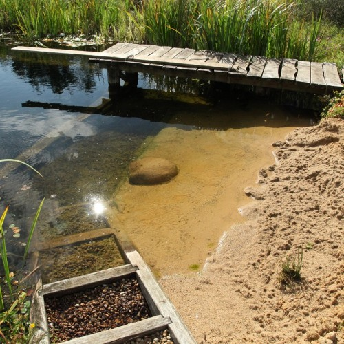 Build Your Own Organic Swimming Pond