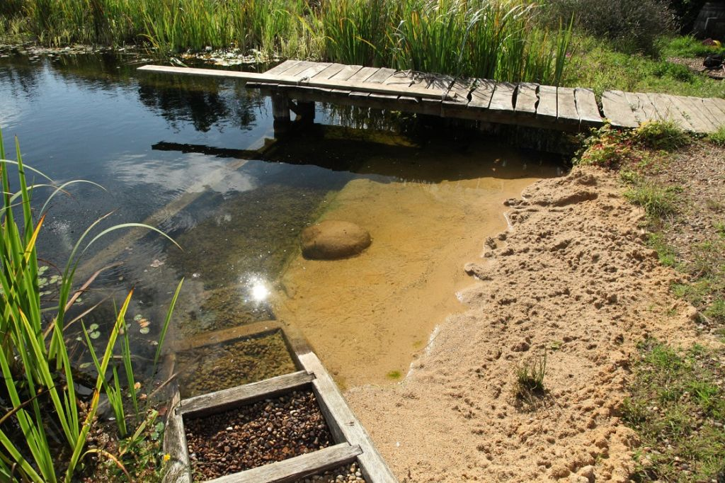Build your own organic swimming pond for Koi pond natural swimming pool