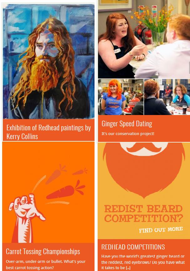 2017_05_23_12_16_06_Irish_Redhead_Convention