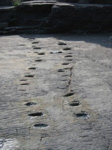 Tetrapod footprints on Valentia Island