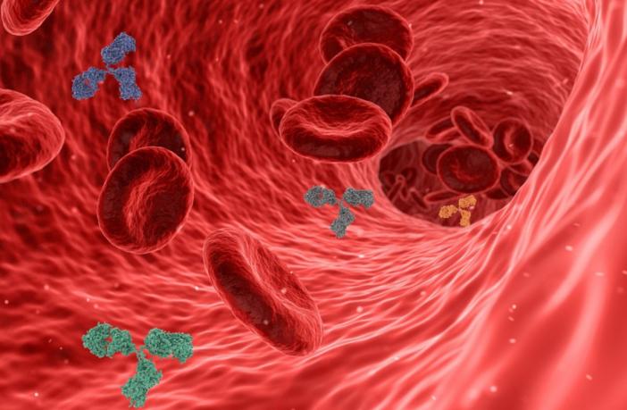 Haemochromatosis